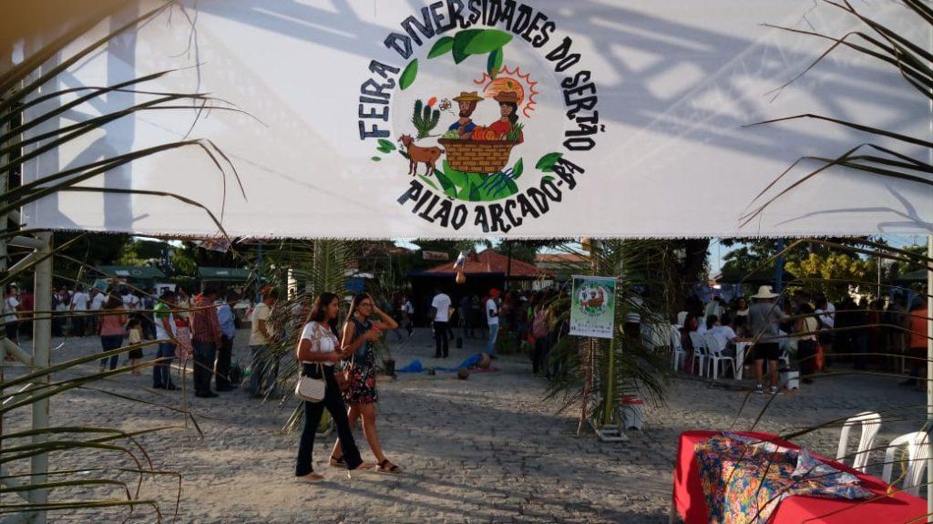 FEIRA | Jovens realizam Feira Agroecológica em Pilão Arcado e cativam o público do campo e da cidade