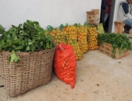 CORONAVÍRUS | Mal começamos a subir a montanha… Evidências, sinalizações e lições para as políticas alimentares