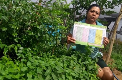 Série revela impacto das Cadernetas Agroecológicas na vida das agricultoras atendidas pelo Pró-Semiárido