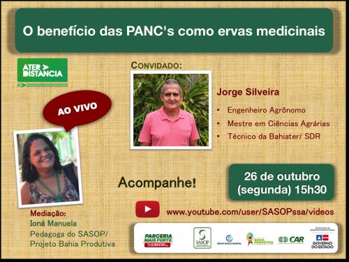 LIVE: O benefício das PANCs como ervas medicinais