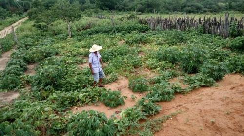 """Agricultura familiar: """"Vamos pressionar pela derrubada dos vetos de Bolsonaro"""""""