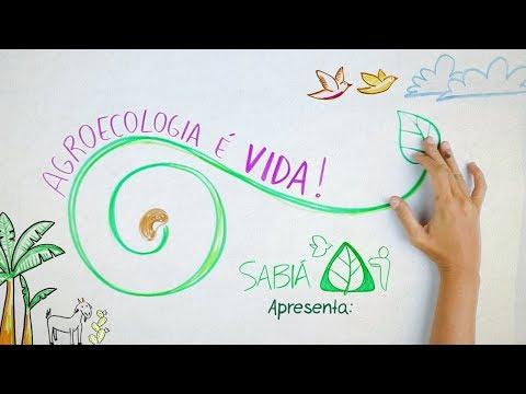 Agroecologia é Vida!