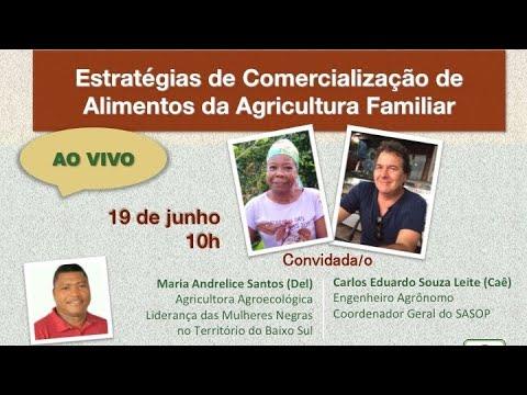 Estratégias de Comercialização de Alimentos da Agricultura Familiar