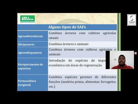 Passos para implantação de Sistema Agroflorestais