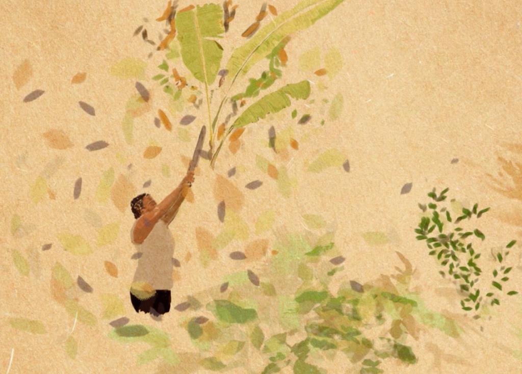 """""""Territórios da Agroecologia"""" apresenta experiências de cuidado com o meio ambiente por todo o Brasil"""