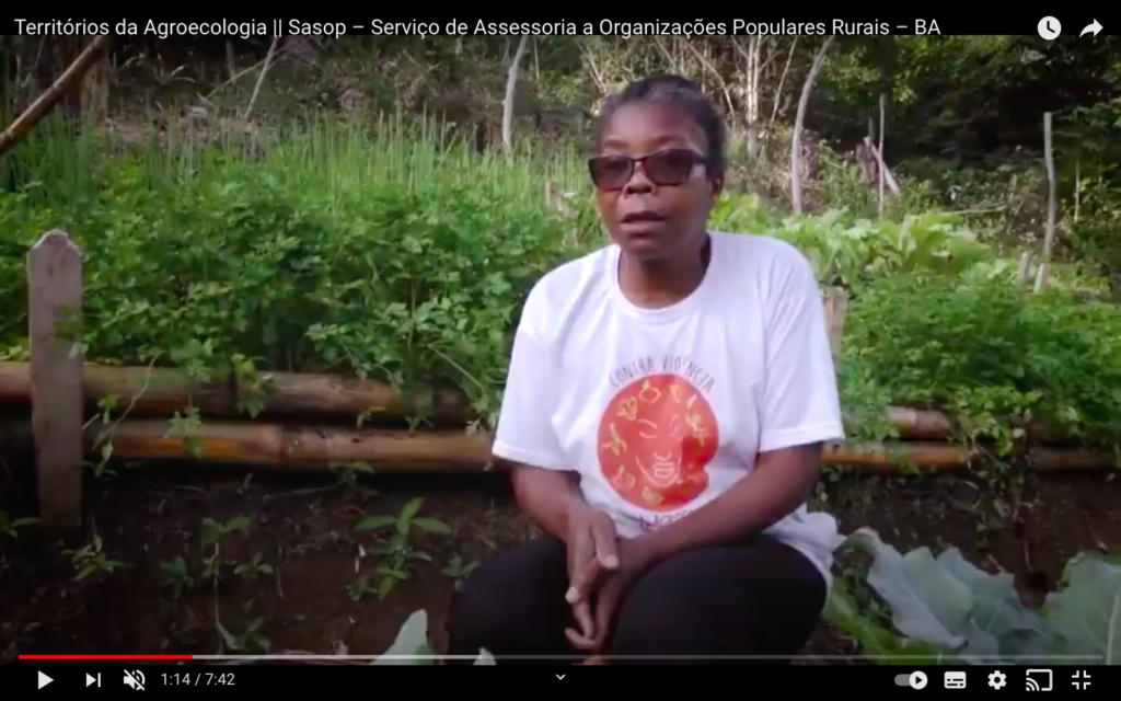 Territórios da Agroecologia – Baixo Sul da Bahia : Assentamento Dandara dos Palmares