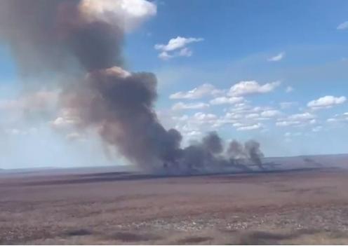 Em vídeo, entidades questionam: quais são as causas dos incêndios na caatinga?