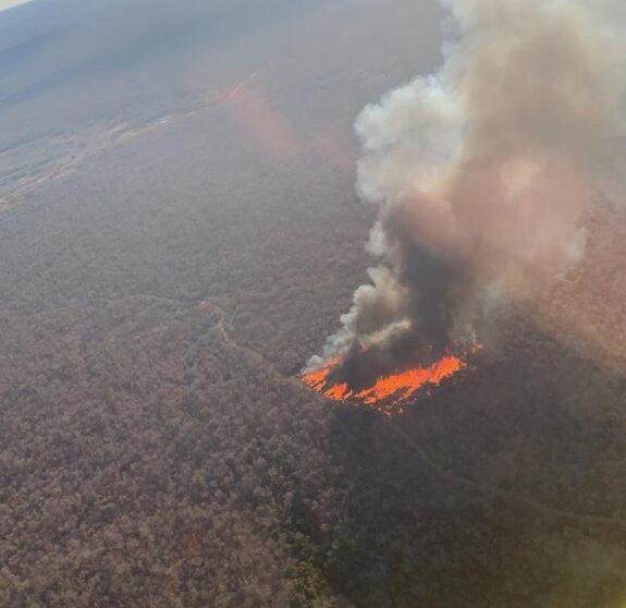 Caatinga em chamas: quais são as causas dos incêndios em Pilão Arcado e Campo Alegre de Lourdes?