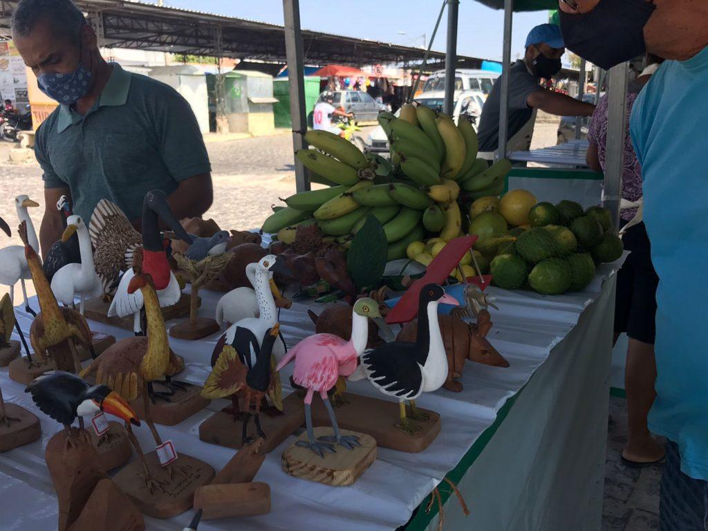Terceira edição da Feira Agroecológica de Remanso consolida iniciativa
